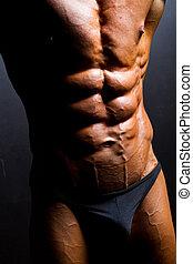 närbild, av, bodybuilder, mage