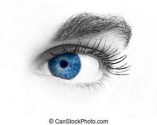 närbild, av, en, ögon