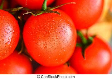 närbild, av, röd, mogen, färska tomater