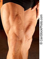 närbild, foto, av, bodybuilder, ben
