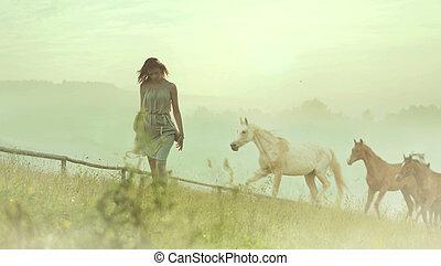 nätt, brunett, dam, vila, bland, hästar