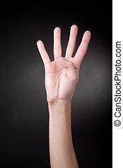 négy, fingers., kiállítás, emberi kezezés