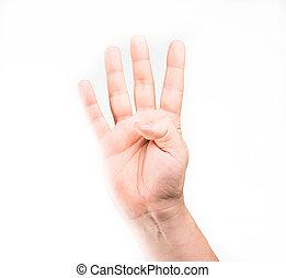 négy, kiállítás, ujjak, emberi kezezés