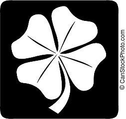négy, lóhere, levél növényen