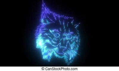 néon, vidéo, eurasien, lynx., numérique
