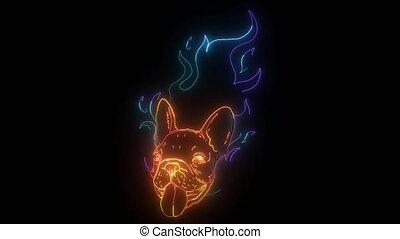 néon, vidéo, flamme, chien, taureau, numérique