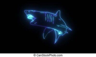 néon, vidéo, requin, blanc, numérique