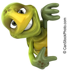 nöje, sköldpadda