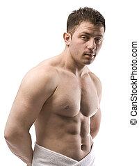 nøgne, mandlig, torso
