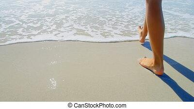 nő, alacsony, tengerpart, szakasz, 4k, gyalogló