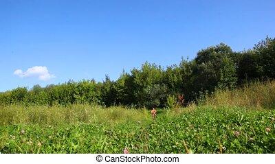 nő, gördülni, bicikli, fényképezőgép, alatt, mező
