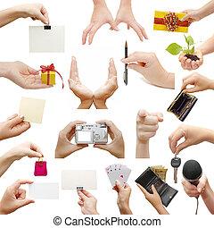 női kezezés, elszigetelt, white, háttér