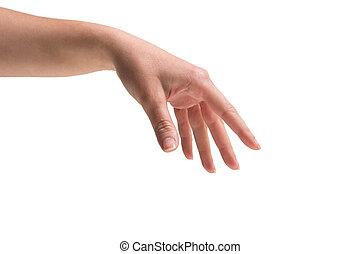 női kezezés, lény, tartott, ki