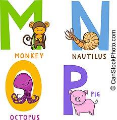 n, alphabet, o, p, animal, m