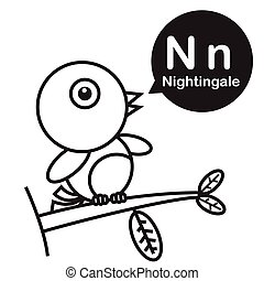 N Nightingale cartoon and alphabet for children to learning and coloring page vector illustration eps10