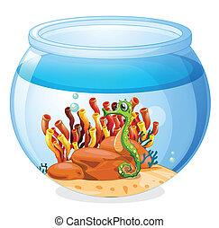 na, akwarium, z, niejaki, seahorse