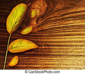 na, liście, stary, tło, drewno, jesień