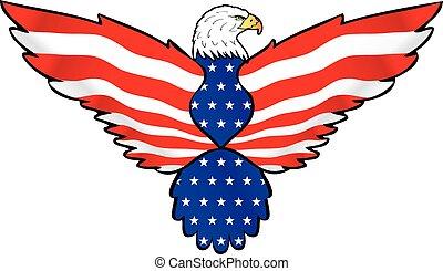 na, pierze, amerykański orzeł, bandera