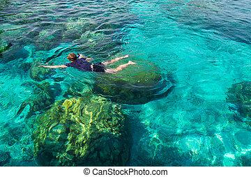 na, rok, wyspa, koral, młody, tropikalny, rafa, morze, tajlandia, przeźroczysty, snorkeling, człowiek