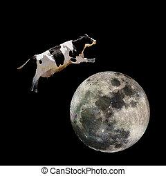 na, skokowy, krowa, księżyc