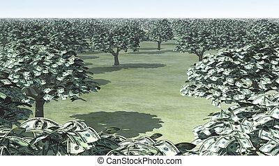 na, sto halabardy dolara, drzewa