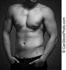 naakt, lichaam, torso., man