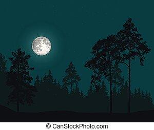 naald, volle, hemel, illustratie, maan, vector, bos, sterretjes, onder