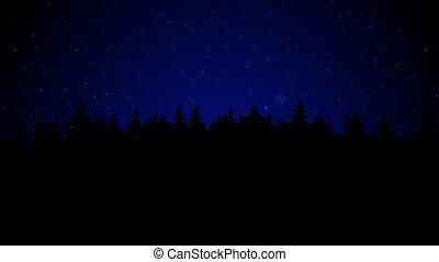 nacht, hout