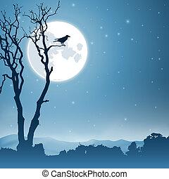 nacht, landschaftsbild