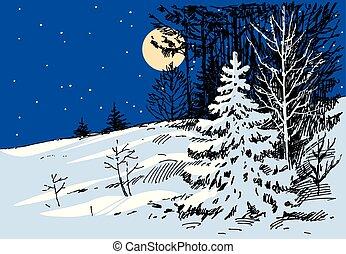 nacht, moonlit, bos, winter
