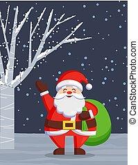 nacht, staand, claus, kerstmis, bos, kerstman