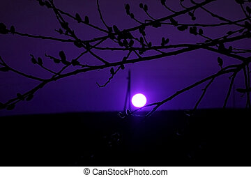 nacht szene