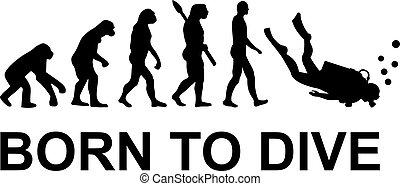 nacido, evolución, zambullida