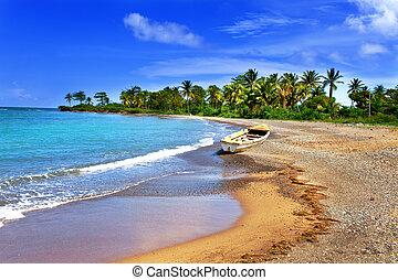 nacional, bahía, jamaica., barco, costa, arenoso