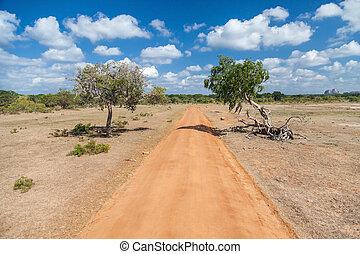 nacional, yala, parque, estrada, sujeira