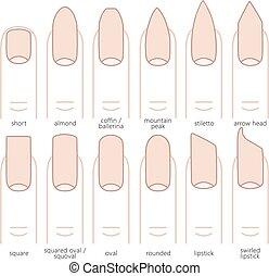 nagel, formen