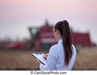 nagniotek, podczas, pole, agronomist, żniwa