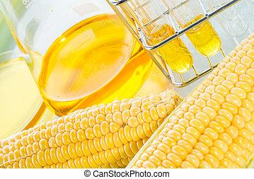nagniotek, sweetcorn, syrop, biofuel, albo