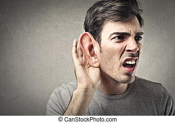 nagy, fül, ember