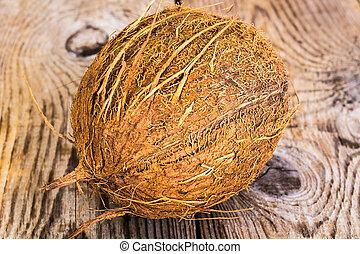 nagy, kókuszdió, érett, barna