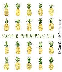 nagy, színezett, tropikus, állhatatos, gyűjtés, pineapples., fruits.
