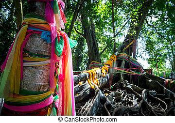 nahaufnahme, bunte, reise, traditionelle , baum, vorhang, thailand