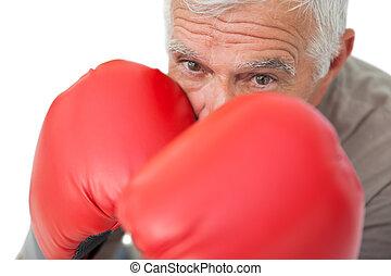 nahaufnahme, porträt, von, a, entschlossen, älter, boxer