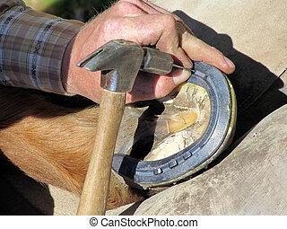 Nailing Down the Horseshoe
