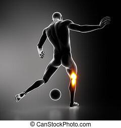 najbardziej, akcentowany, sportowiec, połączenie, kolano