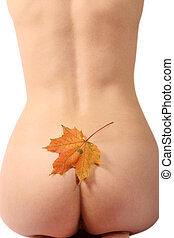 Naked body of the girl with a maple leaf