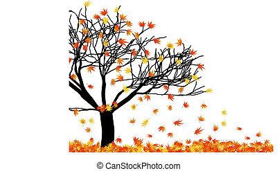 naked maple tree - Autumn maples leaves. Vector...