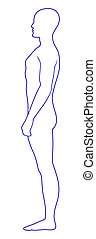 Naked standing man - Full length side view of a standing...