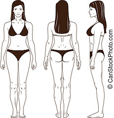 Naked standing woman vector - Full length front, back, side...