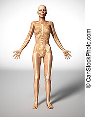 Naked woman body, with bone skeleton. - Naked woman standing...